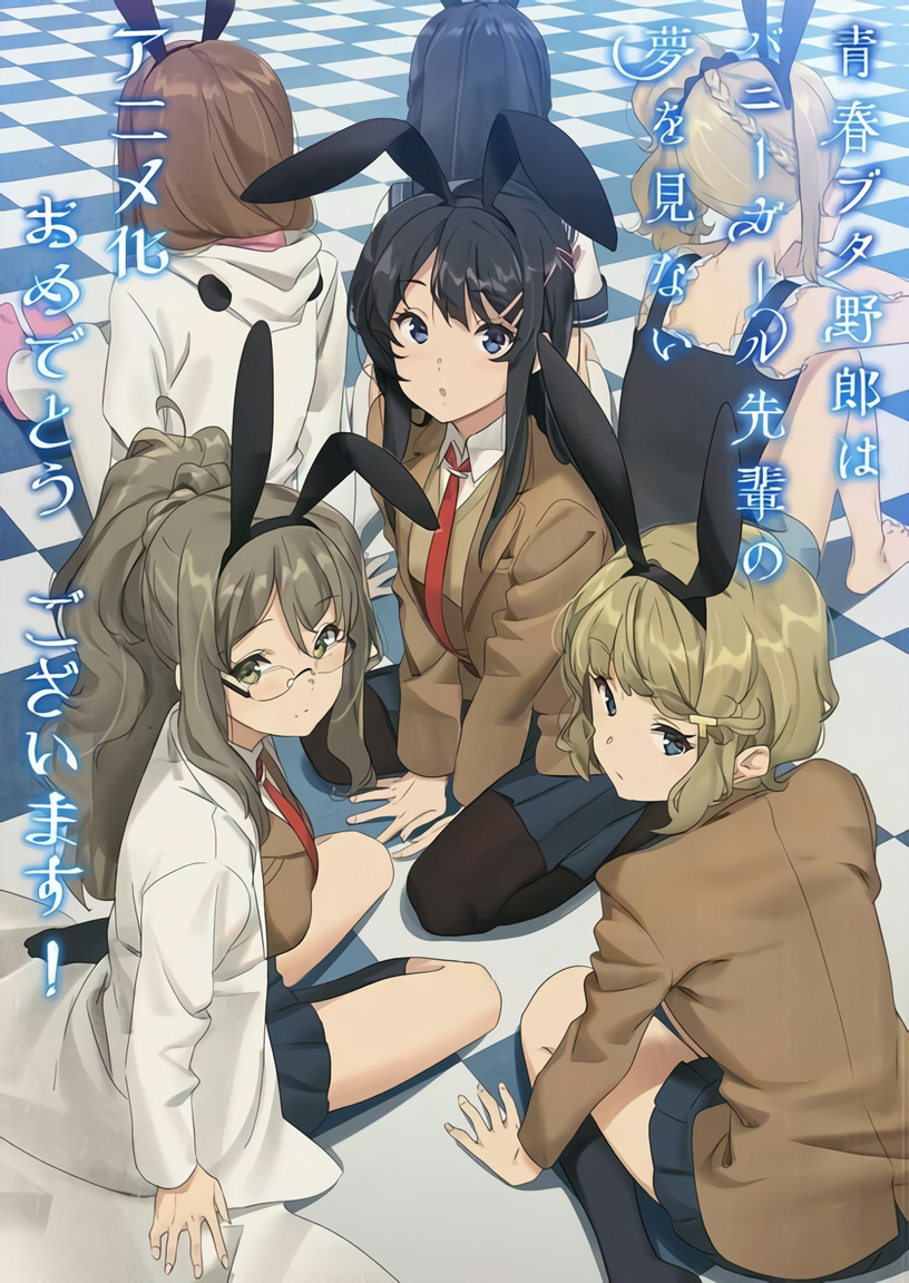 Seishun Buta Yarou: Rabbit Group